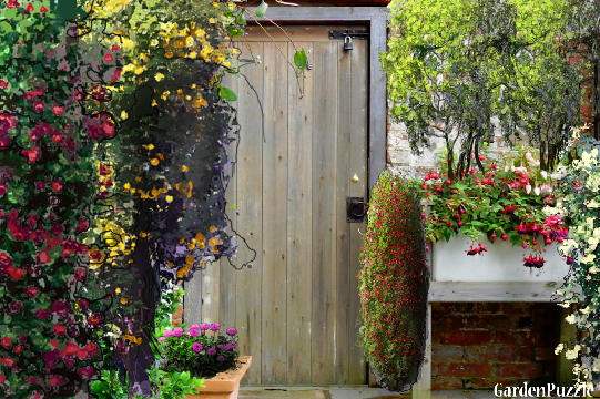 Garden design:wood door - Summer