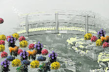 Garden design:Bridge's garden