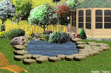 Garden design:the pond