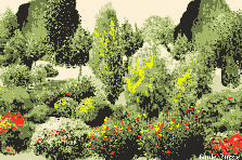 Garden design:Yellow Red Pop