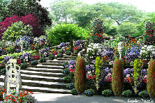 Garden design:Old stairs to an ancient love garden