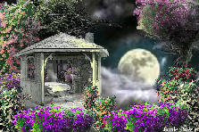 Garden design:IN THE LIGHT OF THE MOON