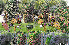 Garden design:three gazebo lane