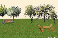 Garden design:proportion
