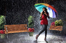 Garden design:Singing In The Rain
