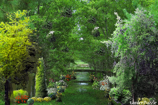 Garden design:Pockets - Summer