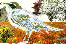 Garden design:Bird in