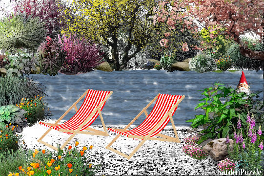 Garden design:Out for a swim.  - Spring
