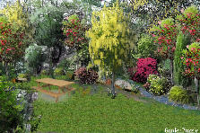Garden design:grove
