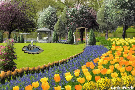 Garden design:field of tulips - Spring