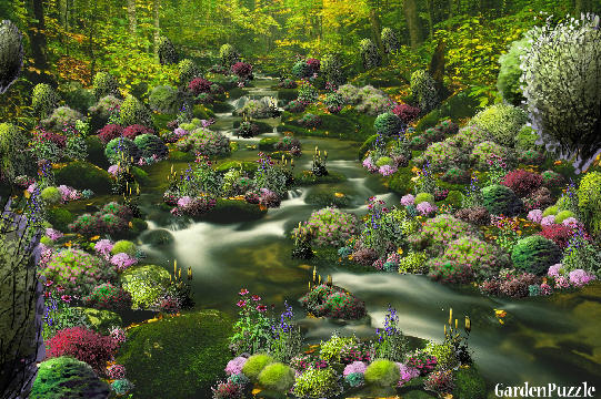 Garden design:The Mysterious Trickling Brook - Summer