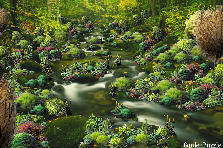 The Mysterious Trickling Brook - Spring