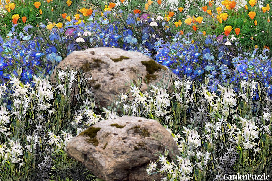 Garden design:Field Rocks - Spring