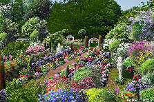 Garden design:Many Wonder's Private Garden