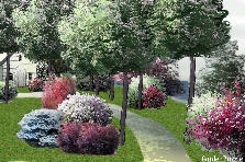 Garden design:Avenue of trees on the riverbank