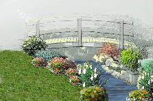 Garden design:water garden
