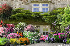 Garden design:window