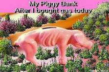 Garden design:Gas ate my piggy bank