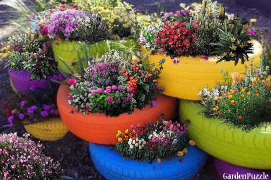 Garden design:Tire planters - Spring