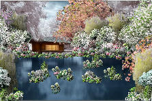 Garden design:Calm Waters, and Sernity