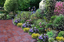 Garden design:garden patio