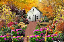 Garden design:grammy's house