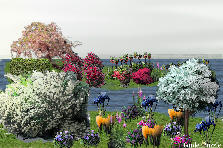Garden design:flower beach