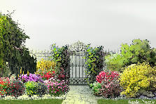 Garden design:Secret Gate