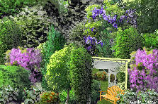 Garden design:jardin des arbres