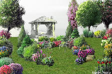 Garden design:fallen in Love
