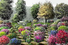 Garden design:I Want to Be Here