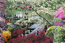 Garden design:Lakeside Boardwalk