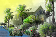 Garden design:lost paradise