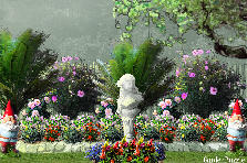 Garden design:i love my garden