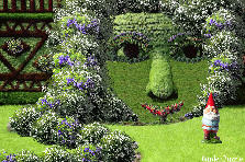 Garden design:a little makeover shall do!!!!