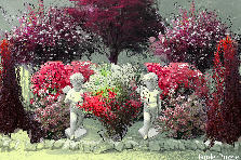 Garden design:sweetheart Garden 