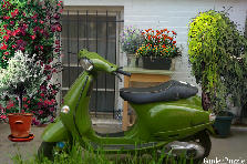 Garden design:Green scooter