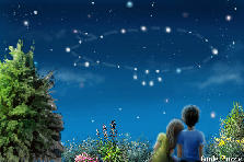 Garden design:NIGHT SKY'S