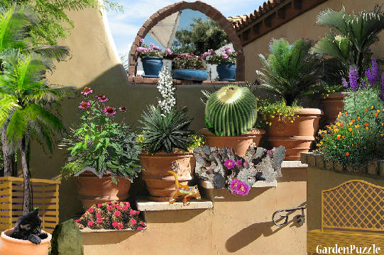 Desert Home Garden Gardenpuzzle Online Garden Planning