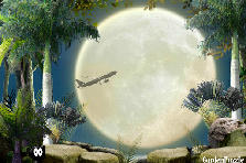 Garden design:Full moon