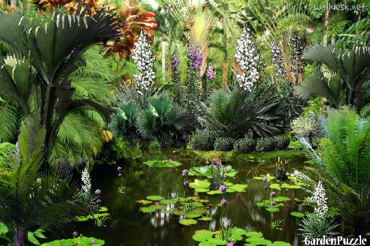 Garden design:Little tropical lake - Spring
