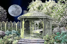 Garden design:the moon