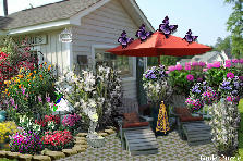 Garden design:Antique Store