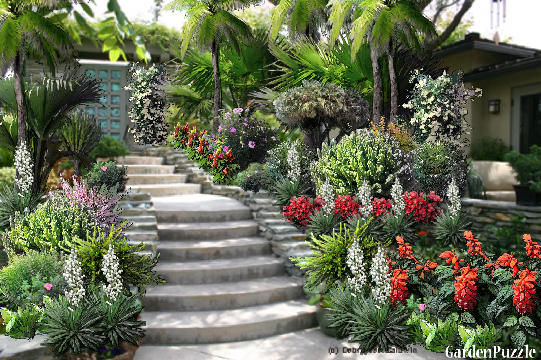 Garden design:Suuny entrance  - Summer