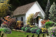 Church Garden  - Autumn