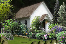 Church Garden  - Summer