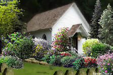 Church Garden  - Spring