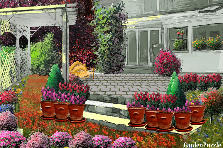Garden design:MY BEAUTIFUL HOME!!!!
