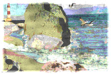 Garden design:Seagulls on the Beach Reefs.2-Watercolor