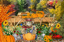 Garden design:Entrance to the the pumpkin patch.